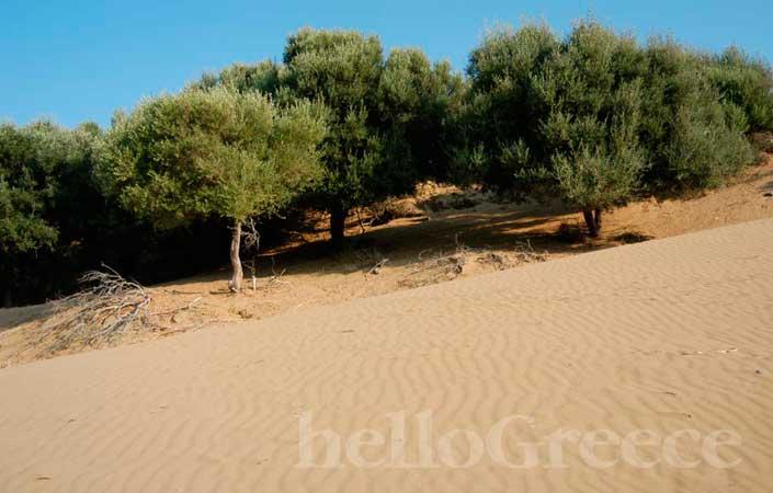 Λήμνος αμμοθίνες